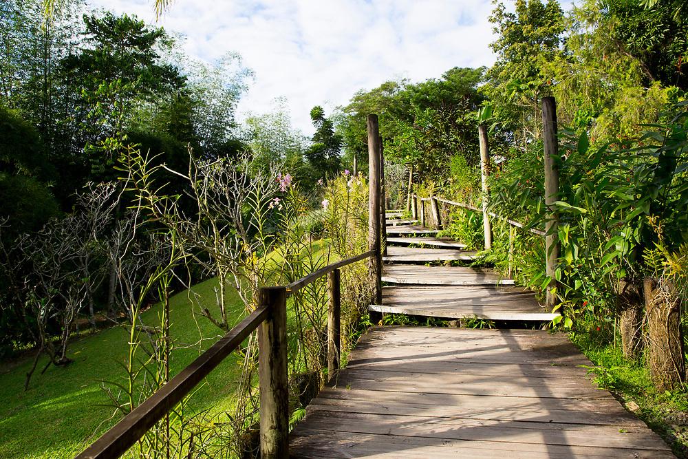 Garden of the Sleeping Giant in Nadi, Viti Levu, Fiji on June 21, 2014<br /> <br /> copyright: Christina Czybik