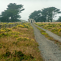 A lonely house sits beneath cypress trees near the ocean at Point Reyes National Seashore, California.