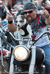 An impatient biker and his dog shout for bikes to keep on moving on Main Street during Biketoberfest. Daytona Beach, FL, USA. Friday October 20, 2017. Photography ©2017 Michael Lichter.