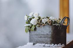 THEMENBILD - Frühlingsblumen mit Schnee bedeckt, aufgenommen am 07. April 2021 in Kaprun, Österreich // Spring flowers covered with snow, Kaprun, Austria on 2021/04/07. EXPA Pictures © 2021, PhotoCredit: EXPA/ JFK