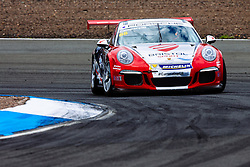 Dino Zamparelli | Bristol Sport Racing | #88 Porsche 911 GT3 Cup Car | Porsche Carrera Cup GB | Free Practice - Mandatory byline: Rogan Thomson/JMP - 07966 386802 - 21/08/2015 - MOTORSPORT - Knockhill Racing Circuit - Dunfermline, Scotland - BTCC Meeting Test Day.