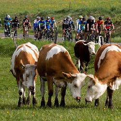 20210501: SLO, Cycling - DOS 2021, Dobrodelno okrog Slovenije, day 5
