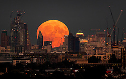 © Licensed to London News Pictures. 24/09/2018. London, UK. A near full Harvest moon rises over London. It is named the Harvest Moon as it is the nearest full moon to the autumnal equinox as the last of the harvest is brought in. This state of the moon, waxing gibbous, is 98. 7% of tomorrow's full moon. Photo credit: Peter Macdiarmid/LNP