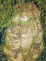 Aerial view of rice terrace on Pulau Lombok island in Indonesia.