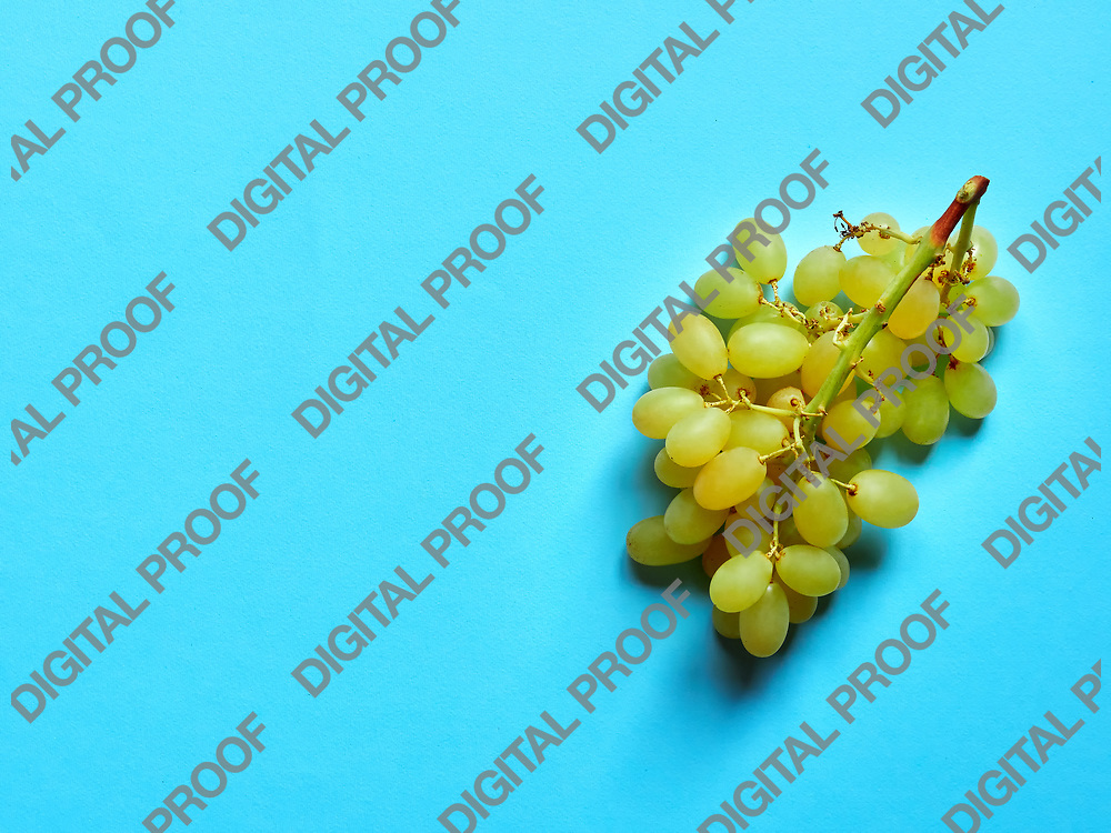 Above view of isolated set of a bunch of sweet seedless grapes in studio with blue background