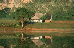Farmhouse next to Mogote (limestone formation)  reflected in lake in countryside outside Vinales; Cuba,