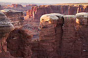 Monument Basin, along the White Rim Trail, Island in the Sky District, Canyonlands National Park, near Moab, Utah.