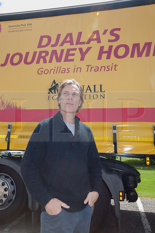 """© London News Pictures. 23/06/2013. Hythe, Kent, UK.(EMBARGO UNTIL 24/06/13). Damian Aspinal, Chairman of The Aspinal Foundation stands in front of the DHL lorry as it leaves to complete the first stage of """"Djala's Journey Home. A critically endangered western lowland gorilla family from Port Lympne Wild Animal Park are bound for Gabon in Africa as part of The Aspinal Foundation's Back to the Wild campaign. Djala, a 30 year old silverback, four mothers and four offspring embark on a unique 6,000 mile journey back to the wild courtesy of its partners DHL. Picture credit Manu Palomeque/LNP"""