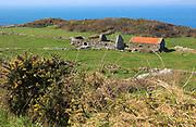 Abandoned ruined croft building on west coast of Cape Clear Island, County Cork, Ireland, Irish Republic