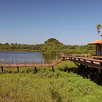 South America, Brazil, Pantanal.  Exterior of the pool and decks of Baiazinha Lodge (6 rooms), overlooking a lake,  at the Caiman Ecological Reserve.