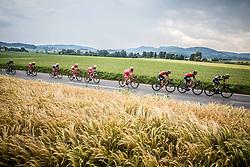 Peloton at Grosuplje during Stage 2 of 24th Tour of Slovenia 2017 / Tour de Slovenie from Ljubljana to Ljubljana (169,9 km) cycling race on June 16, 2017 in Slovenia. Photo by Vid Ponikvar / Sportida