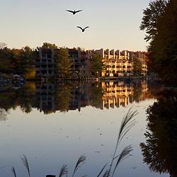 Reston Lake in autumn  Around Reston
