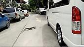 4ft long monitor lizard found hiding in mini van