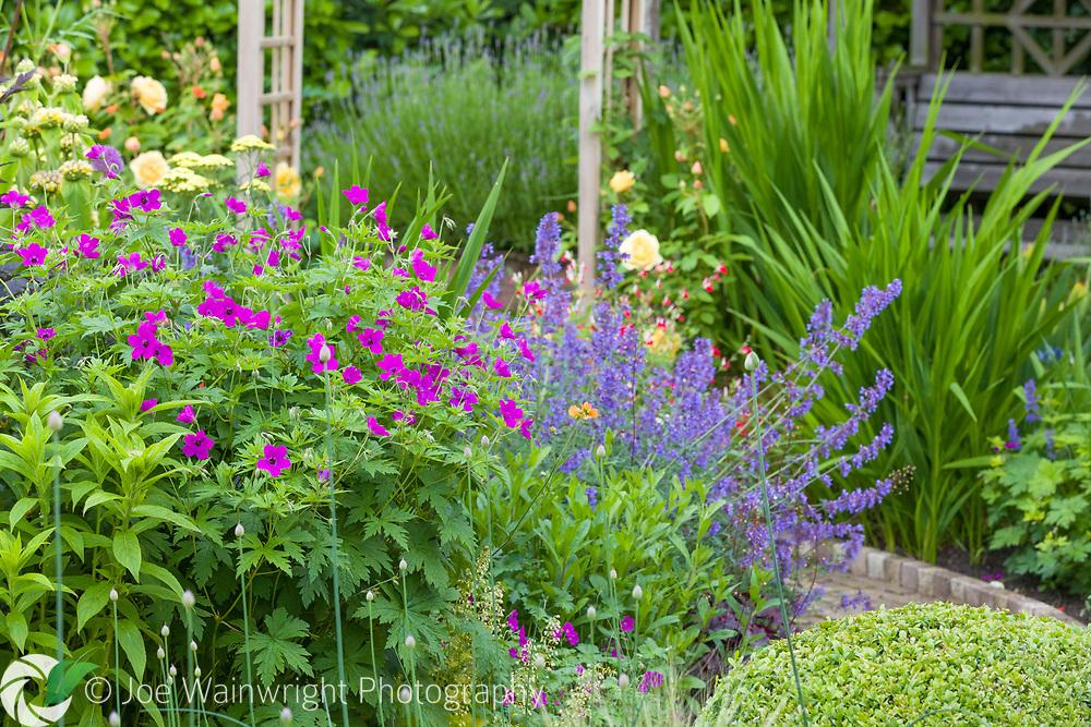The Homesead, a private garden near Knutsford, Cheshire - open through the National Garden Scheme