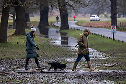 © Licensed to London News Pictures. 31/01/2021. London, UK. Members of the public walk past flooded paths in Richmond Park, South West London this afternoon as the Met Office issue further weather warnings for snow, rain and flooding for large parts of the UK. The Met office has issued weather warnings for much of the UK this weekend for snow, torrential rain and flooding with disruption to travel as the stormy weather continues. Photo credit: Alex Lentati/LNP