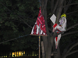 © licensed to London News Pictures. London, UK. 14/07/12. One protestor, known to activists as 'anon' remains in a tree within the square during the eviction, sketching what took place below, before climbing down voluntarily. Enforcement officers clear the remaining 'Occupy' protest camp in London's Finsbury Square during the early hours of this morning after Islington Council won a High Court battle over the site. Photo credit: Jules Mattsson/LNP