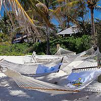 Caribbean, Bahamas, Castaway Cay. Hammocks in shade at Castaway Cay.