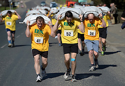 © Licensed to London News Pictures. 06/04/2015. Gawthorpe, UK. Competitors feel the strain during the World Coal Carrying Championships, Gawthorpe, West Yorkshire. Photo credit : Anna Gowthorpe/LNP