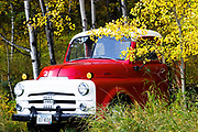 Old Truck in Fall Colors, Rocky Mountain Front.