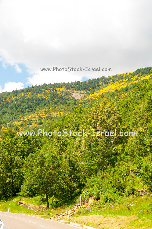 Ordesa Valley national park at Huesca Aragon Pyrenees spain