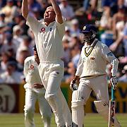 England's Matthew Hoggard celebrates his taking the wicket of Sri Lanka's Sanath Jayasuriya.