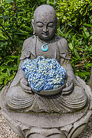 Buddha and Hydrangea at Meigetsuin - Meigetsuin, also known as Ajisaidera or Hydrangea Temple since many Hime Ajisai Princess Hydrangea are planted on the grounds coming into season in June - the rainy season in Japan. Meigetsuin's main hall features a circular moon viewing window, which frames the scenery of the inner garden behind it. The inner garden is famous for its iris garden. Meigetsu means bright moon or harvest moon.  In Japan rabbits are associated with the moon, and so rabbit motifs are found on some decorations in and around the temple and gardens.  Live rabbits are also kept on the temple grounds.  Meigetsuin Temple is of the Rinzai Zen Buddhism sect, and was established as a sub-temple of Zuisenji.