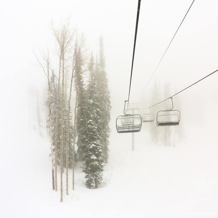 Foggy trees and fresh snow off Dreamcatcher chairlift.
