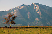 """Bill Fales, owner of Cold Mountain Ranch in Carbondale, Colorado, has been ranching his sliver of land in the Roaring Fork Valley since 1973. <br /> <br /> Development, oil and gas extraction, and mechanized recreation all threaten the valley--and his livelihood. Not surprisingly, Fales is a proponent of conservation, having placed his property in a land trust in perpetuity. He is also in favor of the expansion of wilderness designation within his and adjoining counties. <br /> <br /> Ranching in Colorado would, arguably, not exist without the use of public lands. Fales' ranch is no different. In order to give his animals the space they need in the summer--and the pasture grasses on his ranch property the time they need to grow high in order to feed his cattle come winter--he must graze on public land. That means securing grazing permits on BLM and U.S. Forest Service land. But it does not preclude the use of wilderness lands either.<br /> <br /> Unknown to much of the public, wilderness areas can serve as grazing lands under the Wilderness Act of 1964. In fact, Fales grazes on Maroon Bells-Snowmass Wilderness area; another permit area is being considered for wilderness designation. His permit would remain if the new designation came to fruition, being """"grandfathered"""" in by that original Wilderness Act."""