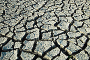 Drought in agricultural fields<br /> St. Jean Baptiste<br /> Manitoba<br /> Canada