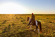 John Zeman follows his German shorthair Louie, inot the sunset during a Montana prairie grouse hunt.