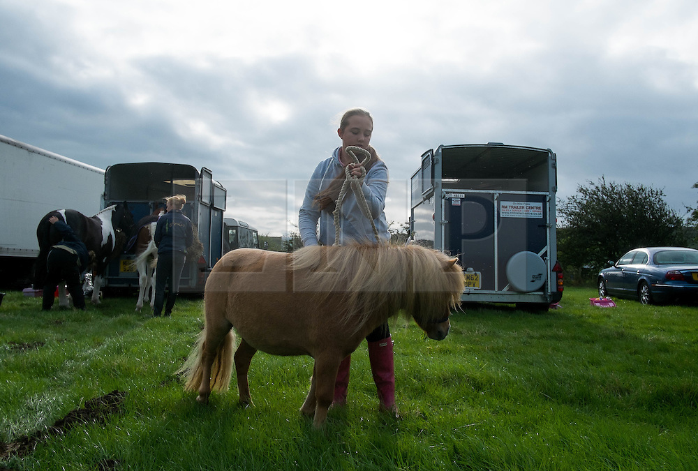 © Licensed to London News Pictures. <br /> 13/08/2014. <br /> <br /> Danby, North Yorkshire, United Kingdom<br /> <br /> A girl exercises her miniature Shetland pony after arriving at the Danby Agricultural Show in North Yorkshire. <br /> <br /> This year is the 154th show which was founded in 1848. It is the oldest agricultural show in the area and offers sheep dog trials, judging of a variety of different animals such as cattle, sheep, ferrets, horses and rabbits along with different classes of horticulture and dairy. <br /> <br /> Photo credit : Ian Forsyth/LNP