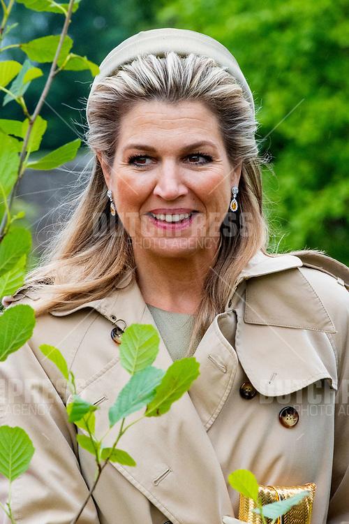 Koningin Maxima tijdens het planten van een boom in het Presidentieel Paleis Aras an Uachtarain in Dublin, op dag 1 van het 3-daags staatsbezoek van het Nederlands Koningspaar aan Ierland.