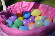 Merrick, New York, USA. April 8, 2017.  Easter basket with plastic, candy filled eggs found during Egg Hunt at Eggstravaganza annual community celebration, hosted by North Merrick Civic Association and American Legion Auxiliary Merrick  Post 1282, with Easter Egg Hunts, balloons, and other outdoor family fun.