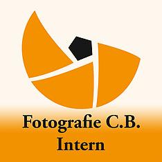 Webseite - Intern