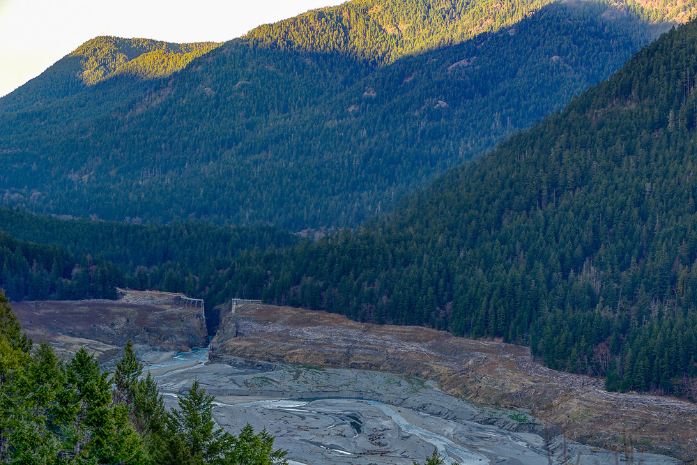 Elwha River afer Glines Canyon Dam Removal, formerly Lake Mills, March 2015, Olympic National Park, WAashington, USA
