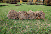 four round hay bales France