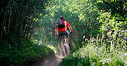 M.O. Alford, 35, of Nederland, Co. rides down a trail named Aspen Alley in the West Magnolia Trail System near Nederland on Wednesday August 2, 2006. The eight to ten miles of trails in the system were ridden illegally for a number of years until the Forest Service incorporated the trails into their system about two years ago. Alford volunteers with the Boulder Mountain Bike Patrol (part of the Boulder Mountain Bike Alliance) on weekends to educate riders about access issues in the area and ensure resource conservation in the area..(MARC PISCOTTY/ © 2006)