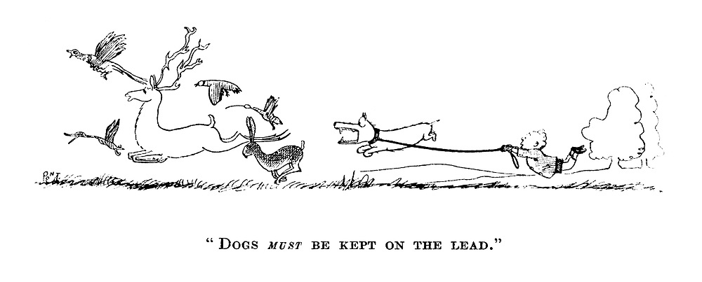 """""""Dogs MUST be kept on a lead."""""""
