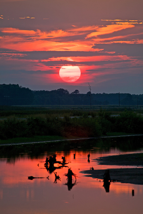 A summer sunset at Blackwater National Wildlife Refuge, a waterfowl sanctuary for birds migrating along the critical migration highway called the Atlantic Flyway. Blackwater Refuge is located on Maryland's scenic Eastern Shore, just south of Cambridge.