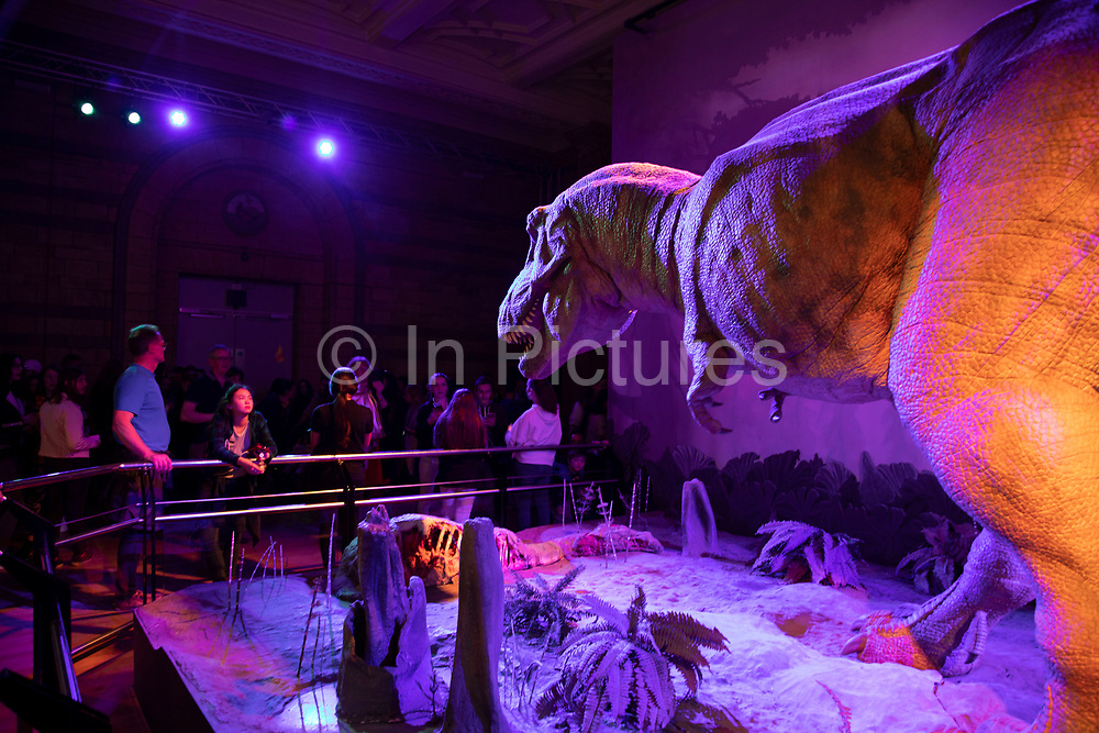 Animatronic Tyrannosaurus and visitors at the dinosaurs exhibition room at the Natural History Museum in London, England, United Kingdom. The T. rex is a genus of coelurosaurian theropod dinosaur. The museum exhibits a vast range of specimens from various segments of natural history. The museum is home to life and earth science specimens comprising some 80 million items within five main collections: botany, entomology, mineralogy, paleontology and zoology. The museum is a centre of research specialising in taxonomy, identification and conservation.