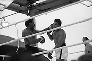 Ali vs Lewis Fight, Croke Park,Dublin.<br /> 1972.<br /> 19.07.1972.<br /> 07.19.1972.<br /> 19th July 1972.<br /> As part of his built up for a World Championship attempt against the current champion, 'Smokin' Joe Frazier,Muhammad Ali fought Al 'Blue' Lewis at Croke Park,Dublin,Ireland. Muhammad Ali won the fight with a TKO when the fight was stopped in the eleventh round.<br /> <br /> Photo of a good Lewis left cross as he connects wit Ali's head.