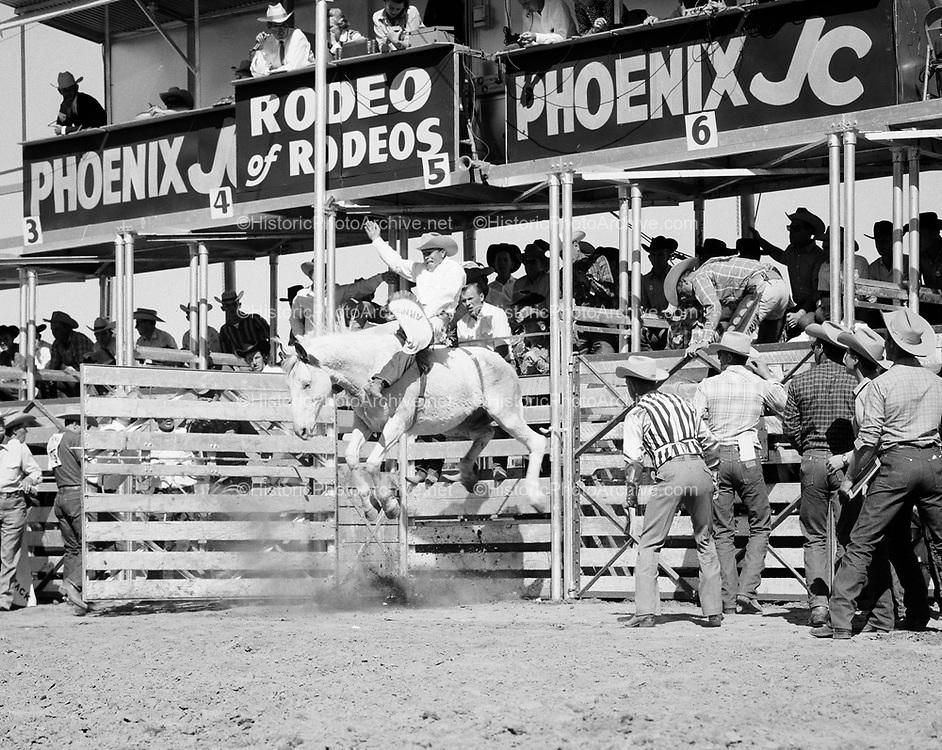0301-001. Phoenix, Arizona JC Rodeo. 1950s