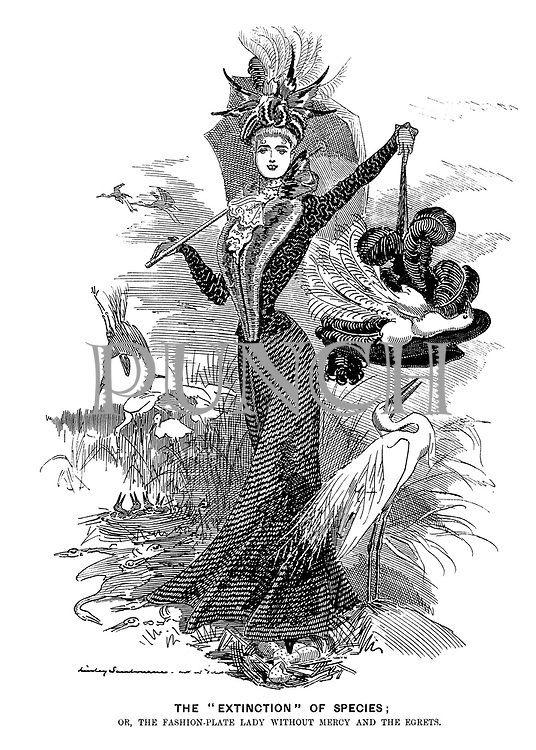 "The ""Extinction"" of Species; Or, the fashion-plate lady without mercy and the egrets."