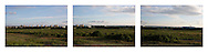 'Three Strips III, 2014'  from the project 'The Fall and Rise of Ravenscraig' by photographer Colin McPherson.<br /> <br /> Photograph shows a section of land on the site of the former Ravenscraig steelworks.<br /> <br /> This project, photographed in 2014, looks at the topography of the post-industrial landscape at Ravenscraig, the site until its closure in 1992 of the largest hot strip steel mill in western Europe. In its current state, Ravenscraig is one of the largest derelict sites in Europe measuring over 1,125 acres (4.55 km2) in size, an area equivalent to 700 football pitches or twice the size of Monaco. It is currently being developed with a mix of housing, retail and the home of South Lanarkshire College and the Ravenscraig Regional Sports Facility.