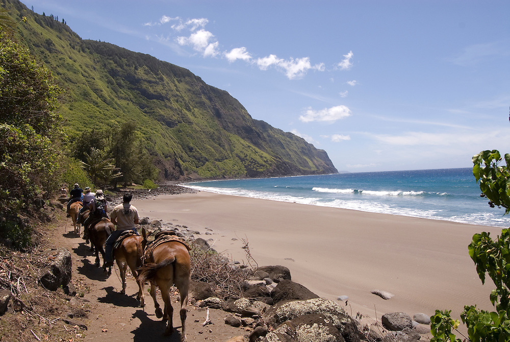 Hawaii: Molokai, the Mule Ride from the cliff tops down 1,600 feet to the leper colony at Kalaupapa..Photo himolo151-72300.Photo copyright Lee Foster, www.fostertravel.com, lee@fostertravel.com, 510-549-2202