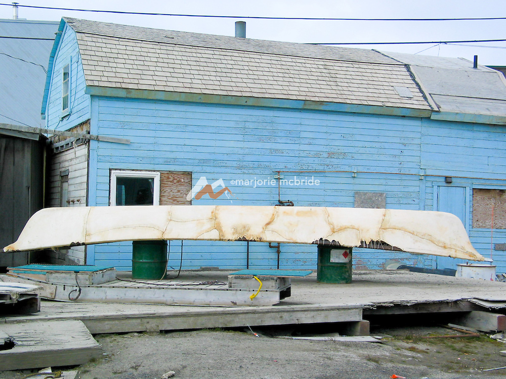 Seal skin cannoe in front of blue house. Barrow Alaska, the most northernly point in the USA.