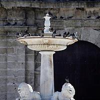 Central America, Cuba, Havana. Old Havana Fountain and pigeons.