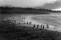 Asilomar State Beach, CA.