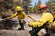 22 JUNE 2010 - FLAGSTAFF, AZ: Jeff Shaw (CQ) from Christopher Kohl's FD (CQ) and Scott Van Eckhoutte (CQ) from Christopher Creek FD work a hot spot on the line at the Schultz Fire burning north of Flagstaff, AZ. The fire has consumed more than 12,000 acres of forest land and burned within a few feet of homes in some neighborhoods in Flagstaff.  PHOTO BY JACK KURTZ