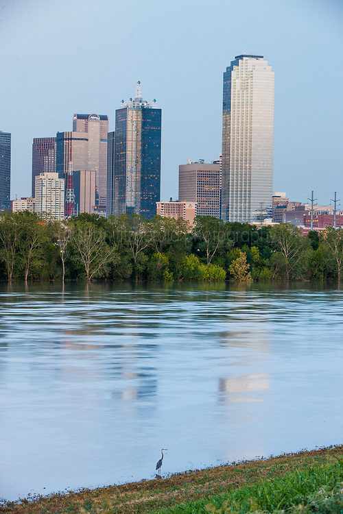 Trinity River and downtown during flood, Dallas, Texas, USA.